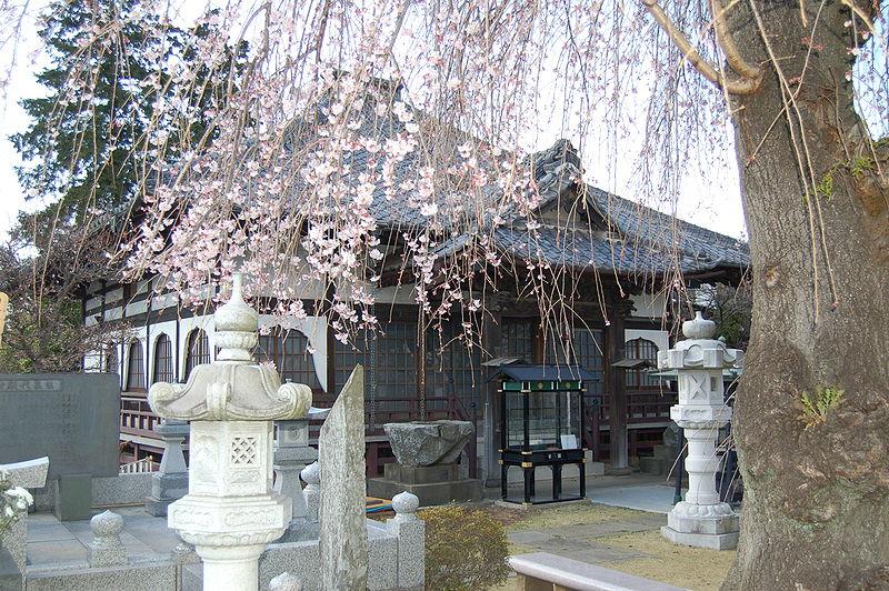 Shinzentouron Tempellaterne Takayama