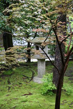 Kyoto Ryoanji Tempelgarten
